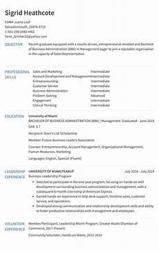 resume format in sales sales resume sle resume com