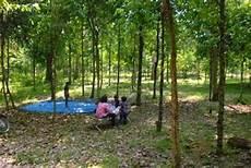 11 Tempat Wisata Di Kota Langsa Surga Aceh Informasi