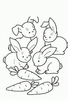 kaninchen malvorlagen zum ausdrucken coloring and