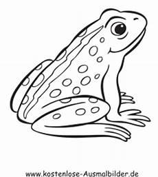Malvorlage Frosch Einfach Ausmalbild Frosch 1 Zum Ausdrucken