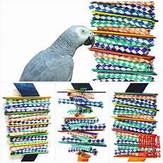 shapes and designs worksheets 1078 1078 big step shredder bird toys pet birds your pet