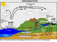 Cap Cycle Diagram by The Global Hydrological Cycle Estimates Of The Water