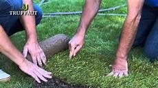 comment poser du gazon naturel en rouleau jardinerie