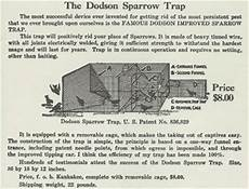 house sparrow trap plans house sparrow history