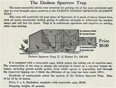 house sparrow trap plans house sparrow history