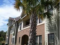Zillow Apartments Wilmington Nc by Apartments For Rent In Wilmington Nc Zillow