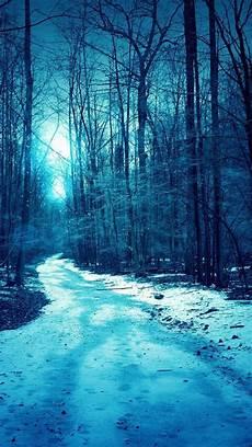 iphone wallpaper winter trees iphone winter tree wallpaper wallpapersafari