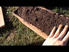 Semer Des Carottes Sans Travail Du Sol Sur Compost De D