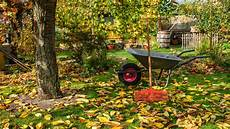 Rasenpflege Im Herbst - rasenpflege im herbst tipps zum vorbereiten f 252 r den winter