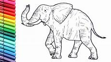draw so animals coloring pages 17359 drawing and coloring a elephant animals color pages for childrens