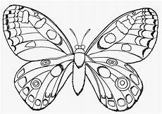 Ausmalbilder Schmetterling Gratis Die Besten 20 Schmetterlinge Ausmalbilder Malvorlagen