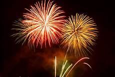 firework phobias delaware vets