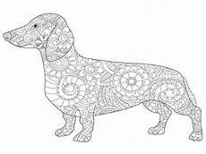 Hunde Ausmalbilder Dackel Kostenloses Ausmalbild Hund Dackel Die Gratis Mandala