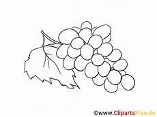 trauben zum ausmalen obst cliparts