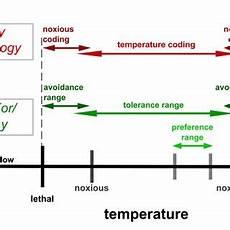 pdf neuronal correlates of temperature guided behavior in ants