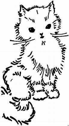 Malvorlagen Katzenbabys Kostenlos Katzenbaby Ausmalbild Malvorlage Katzen