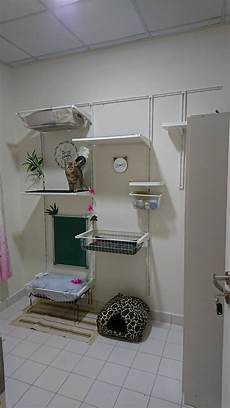 cat wall from ikea algot series ikeahack catwall