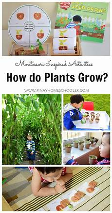 merrill earth science worksheets 13348 teaching toddlers how plants grow how plants grow planting for learning activities