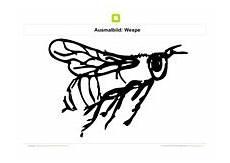 ausmalbilder insekten kostenlose ausmalbilder