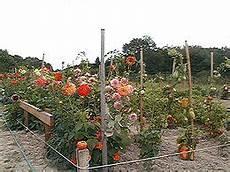 les solaires de jardin 61030 jardins familiaux wikip 233 dia