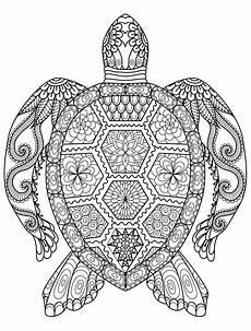 Malvorlagen Mandala Eulen Eulen Bilder Zum Ausdrucken Neu Ausmalbilder Mandala