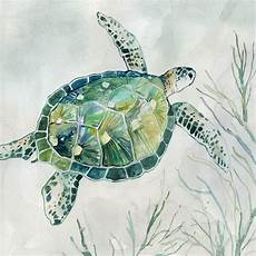 green watercolor turtle 01 pictures mirrors