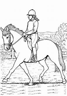 Ausmalbilder Erwachsene Kostenlos Pferde Ausmalbilder Pferde Turnier Ausmalbilder Pferde