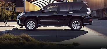 2019 Lexus Gx  Cars Specs Release Date Review And