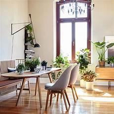 pflanzen für wohnzimmer wohnen mit pflanzen sch 214 ner wohnen