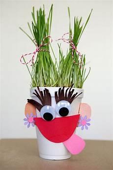 wheat grass plants and cute kids crafts pinterest