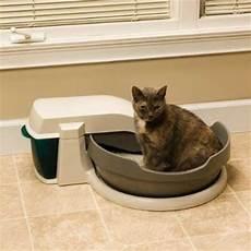cassetta gatti autopulente review petsafe simply clean self cleaning automatic