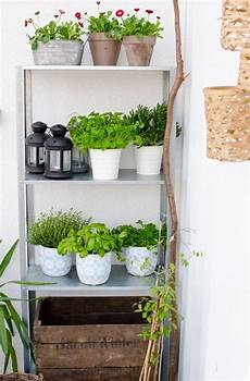 kräuter anpflanzen wohnung regal balkon bestseller shop f 252 r m 246 bel und einrichtungen