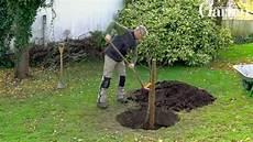 Obstbäume Pflanzen Wann - top baum pflanzen jahreszeit ku93 casaramonaacademy