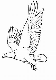 Ausmalbilder Zum Drucken Adler Malvorlage Adler Kostenlose Ausmalbilder Zum Ausdrucken