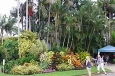 Garden Brisbane by Front Garden Frontage Tropical Gardens
