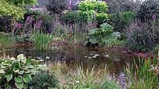 Pflanzen Am Teich Teichumfeld Pflanzen Teichpflanzen