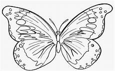 Malvorlagen Schmetterling 315 Kostenlos Malvorlagen Schmetterlinge Ausdrucken