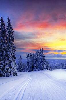 iphone wallpaper snow winter wallpaper 800x1200 winter forest snow