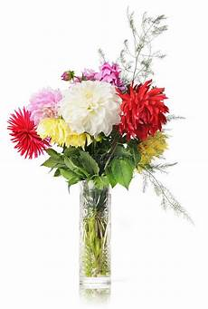 bouquet of flowers in a vase stock photo image