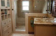 Bathroom Ideas No Tub by 12 X 12 Master Bath With Walk In Closet With Shower No Tub