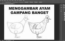Cara Mudah Menggambar Ayam Tahap Demi Tahap Republika