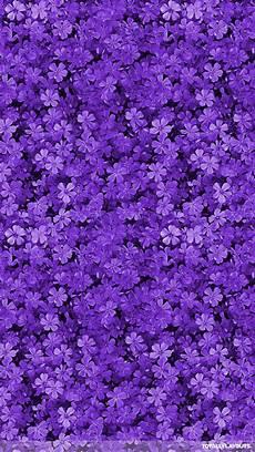 iphone purple flower wallpaper 30 free purple iphone backgrounds freecreatives