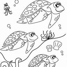 migrating animals coloring pages 17086 sea turtle in a ponds with a frog coloring page sea turtle in a ponds with a frog coloring page