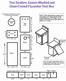 bluebird house plan eastern bluebird maryland s wild acres