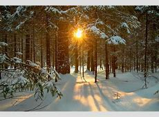 What Time Is The Winter Solstice,Winter Solstice Time and Meaning As It Falls on Great|2020-12-24