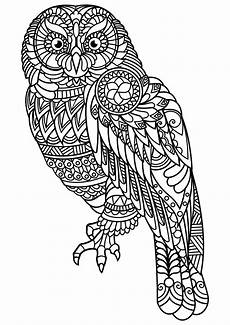 free coloring pages to print animals 17412 animal coloring pages pdf owl coloring pages coloring pages bird coloring pages