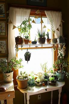 Living Room Home Decor Ideas With Plants by This Is Exactly What A Plant Addiction Looks Like And