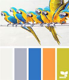 by viljoen colours design seeds color pallets color schemes