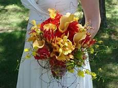 costo fiori favoloso nebbiolina fiore costo ri08 pineglen