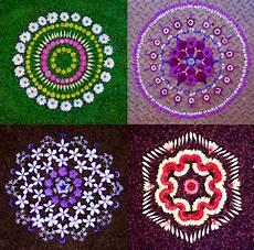 Mandala Klein - artist s wildflower mandalas are offerings from